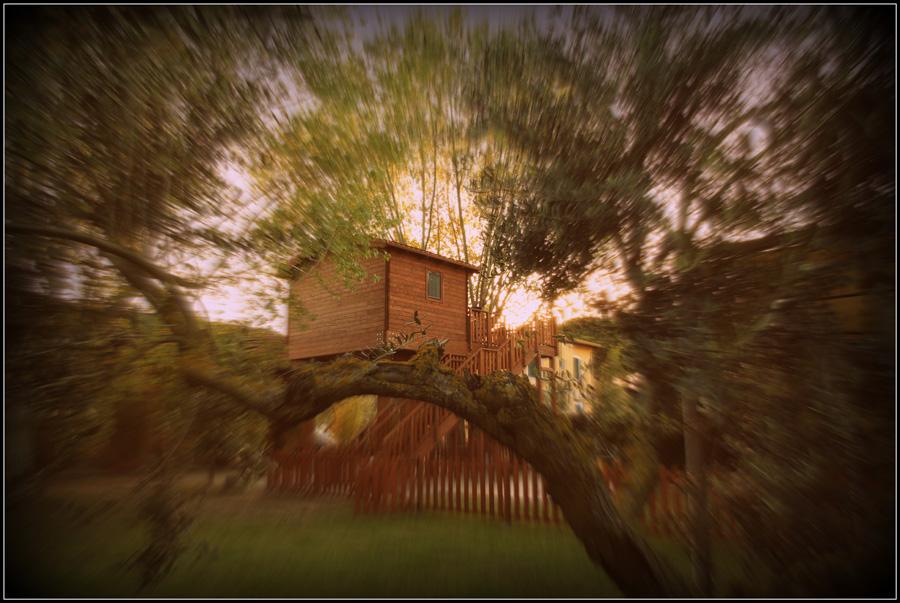 Emozione3, la casa sull\'albero diventa cofanetto - Webitmag - Web in ...