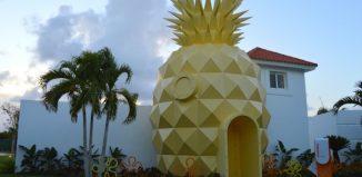 La Pineapple House