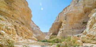 Ein Avdat, deserto di Zin, credit: Manu Grinspan